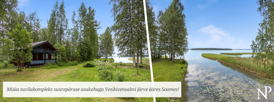 ASIKKALA, JUHANINTIE - Soome flaier - Mika - EST