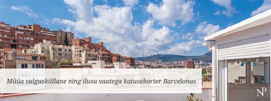 terrassiga katusekorter barcelonas (Katerina)